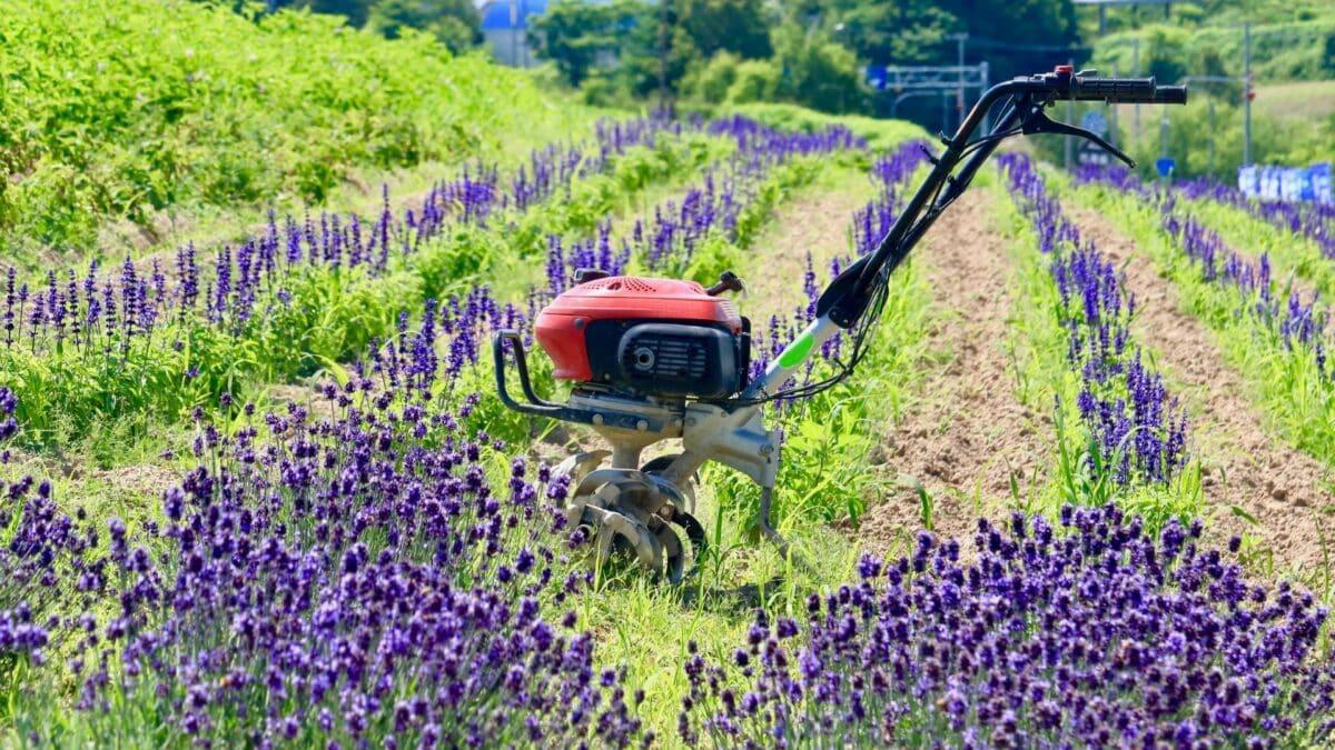 bedste havefræsere