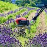 Ekspertvurdering: De 7 bedste havefræsere på markedet